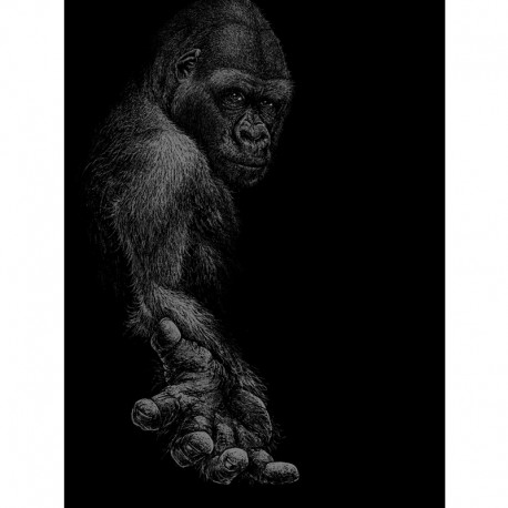 GREAT APE fine art print