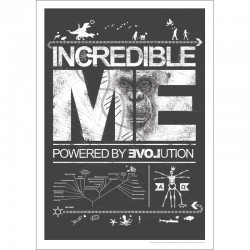 INCREDIBLE ME poster